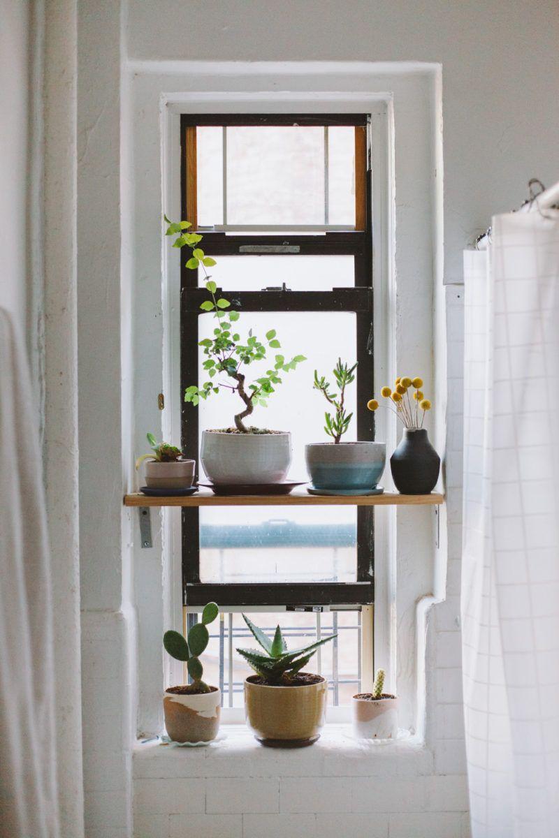Mesmerizing Window Design For Small House To Be Inspired By: 【可愛らしさとおもしろさの混合空間】たくさんの鉢が飾られた陶芸家の自宅の窓際スペース