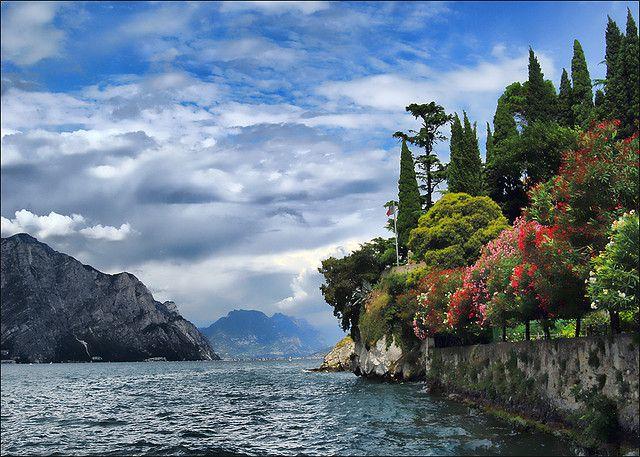 #colori #fiori - Lago di Garda - Italia