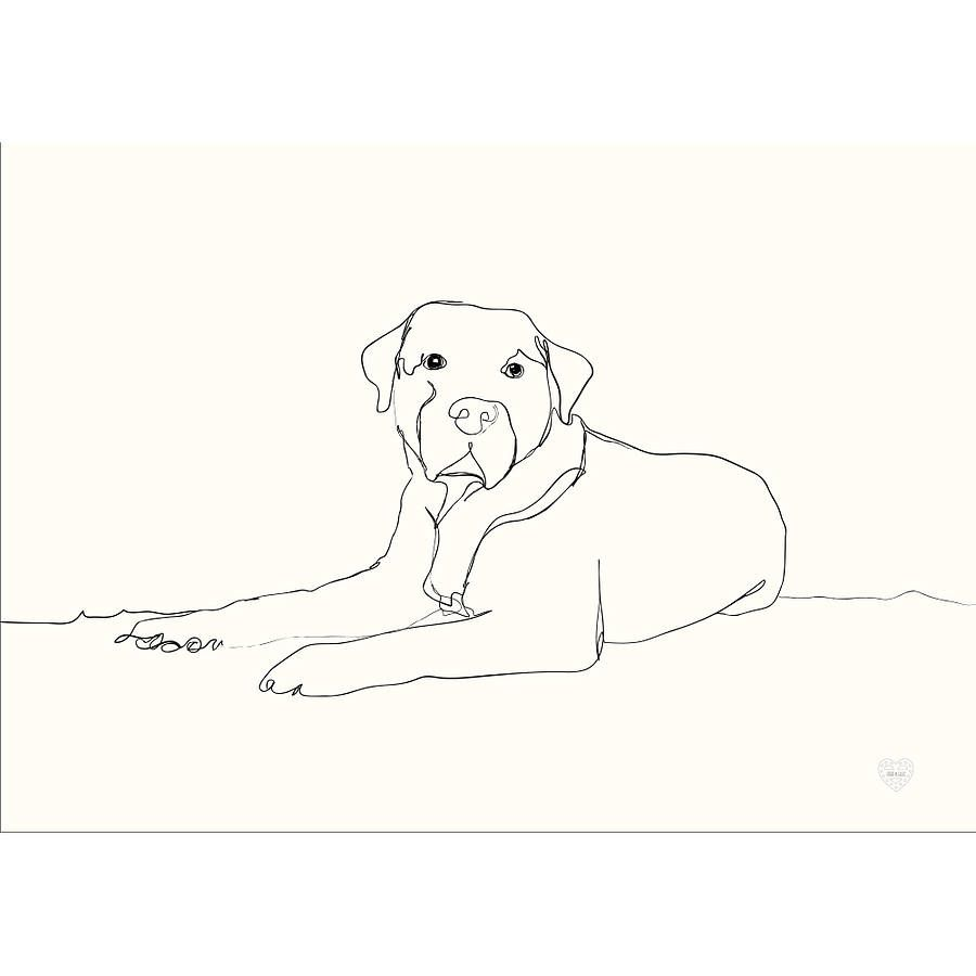 Line Drawing Pet Animals : Personalised pet portrait in mount google search wire