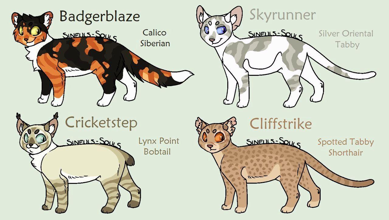 Warrior Cat Drawing Book in 2020 Warrior cat drawings
