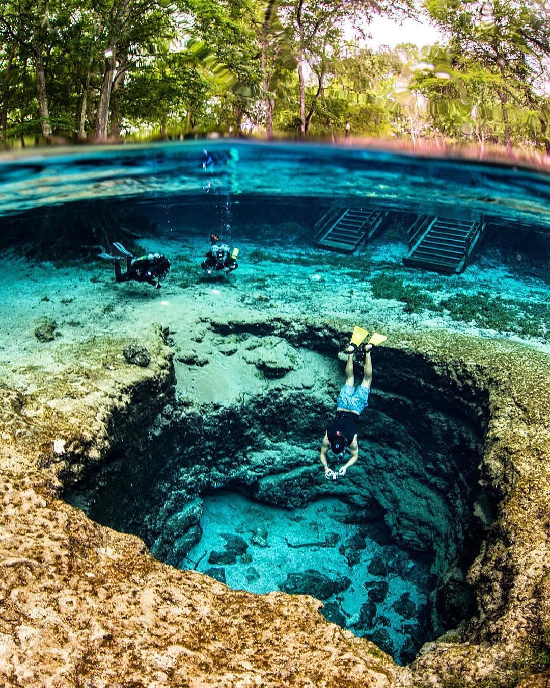 """EARTH OFFICIAL on Instagram: """"Ginnie Springs, Florida, U.S ..."""