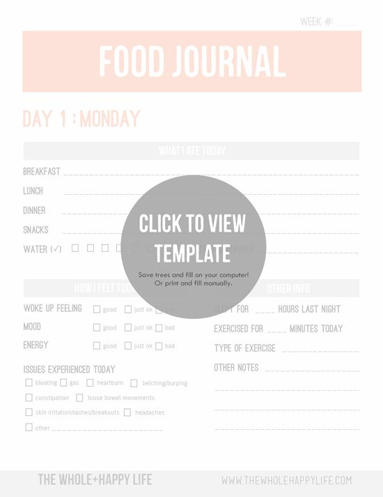 Food journal template - You can either print out the pdf or fill - food journal templates