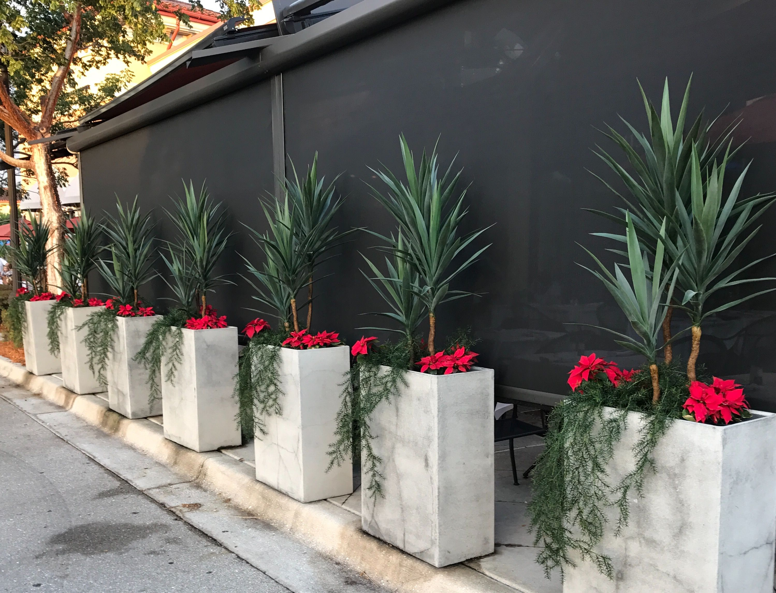 Artificial Outdoor Plants Such As Yucca Trees And Sprengeri Fern Give Maintenance Fre Artificial Plants Outdoor Artificial Plants Decor Small Artificial Plants