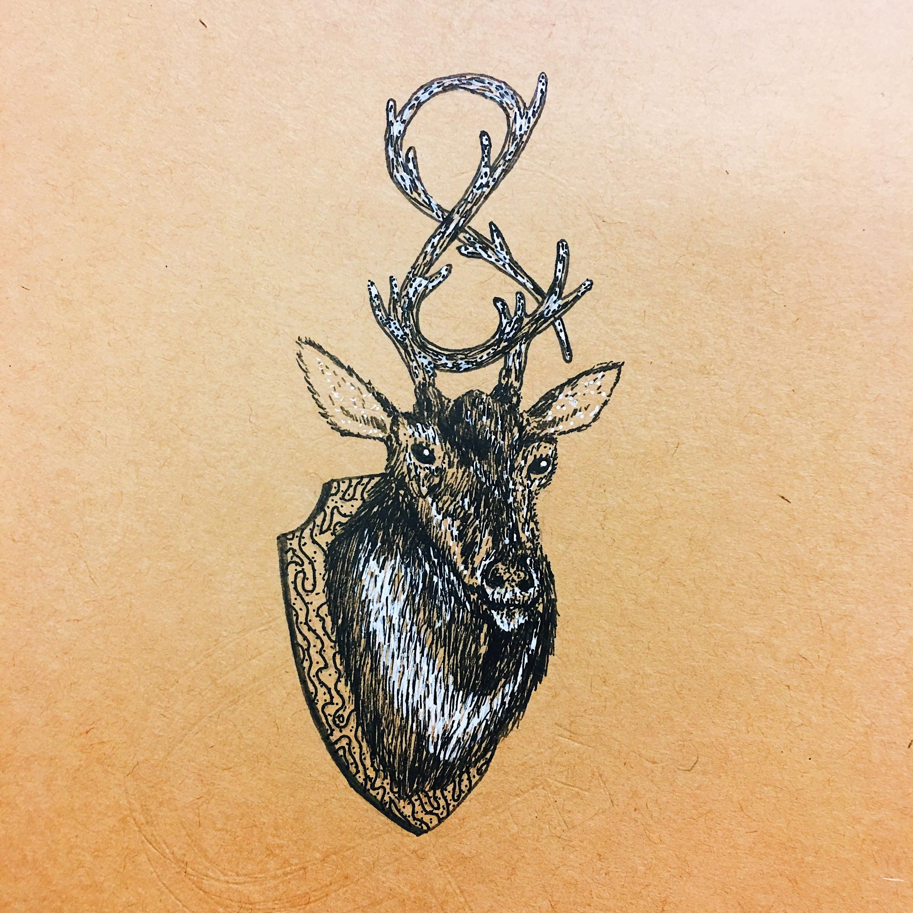Trophy buck pen and ink x art pinterest