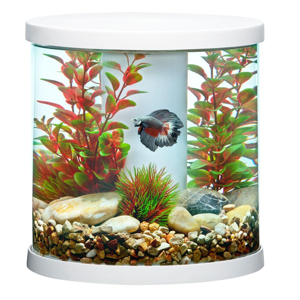 Top Fin Bettaflo Trade Soothe Trade Betta Aquarium 3 5 Gallon In 2020 Betta Aquarium