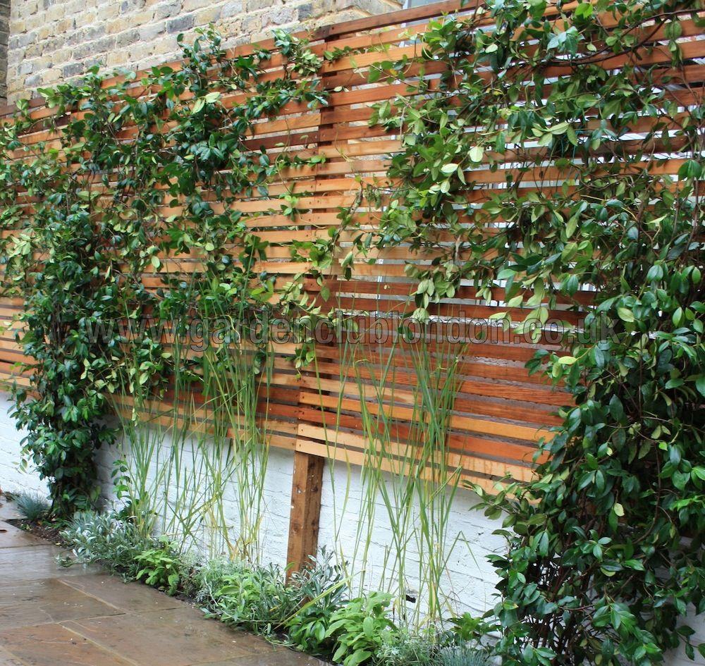 Modern Garden Trellis Design PDF  Modern garden trellis, Garden