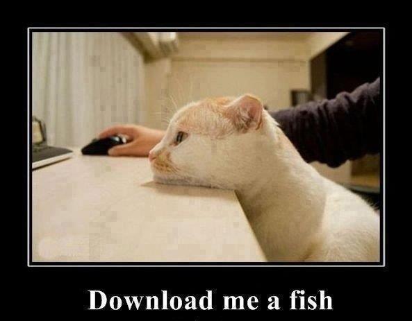 Download him a fish!