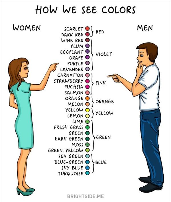 Difference Between Scrabble And Drawing : Differences between men and women illustrated in