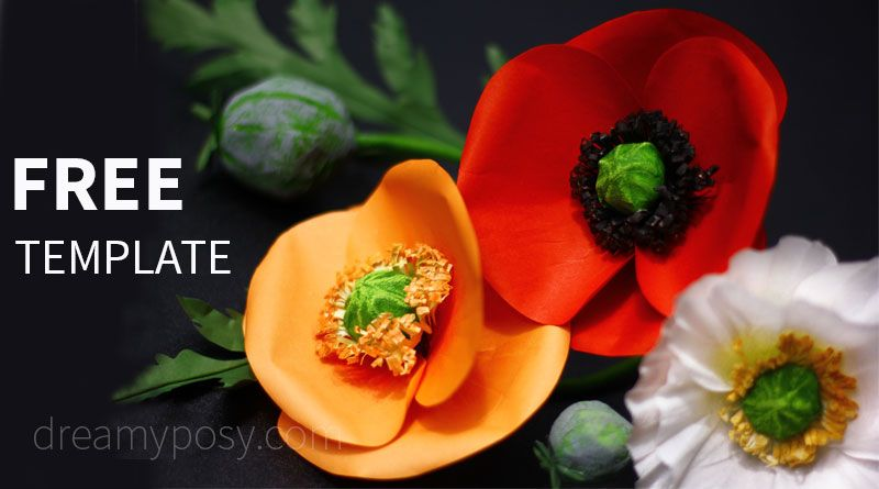 How To Make Poppy Paper Flower From Regular Paper Free Template