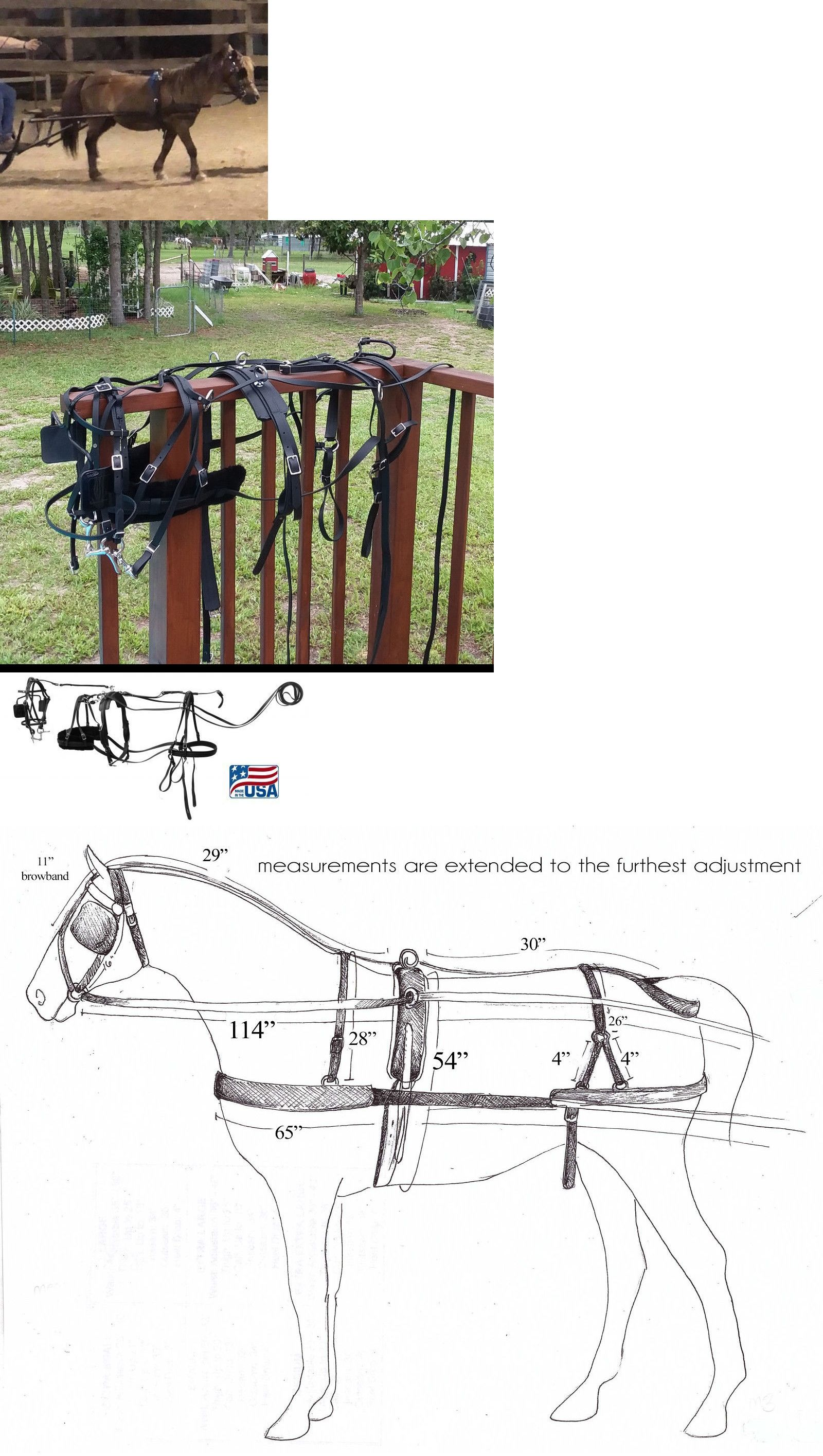 driving equipment 85178 qualtiy synthetic biothane mini miniature horse small pony driving harness usa  [ 1600 x 2830 Pixel ]