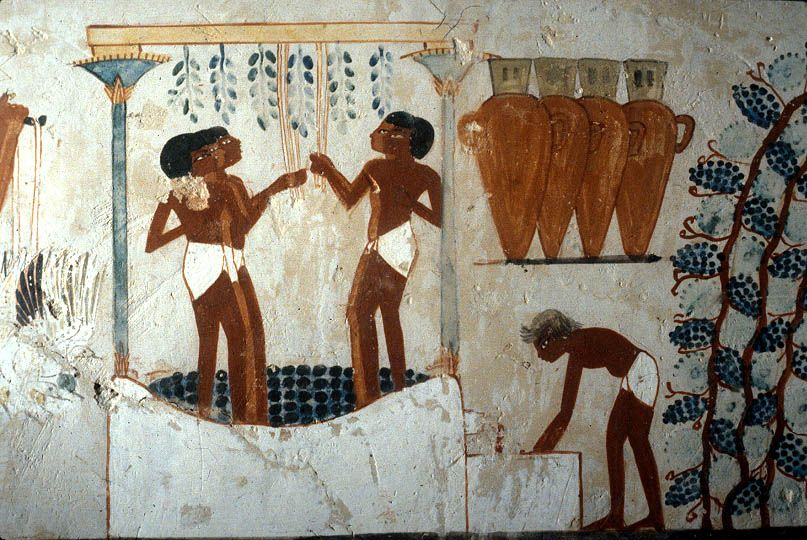 New Kingdom wall painting of vineyard workers with sealed wine jars that are similar to the jars used for child burials at Retaba.