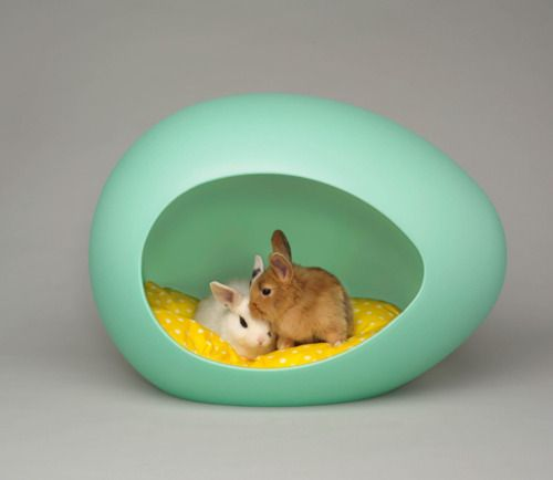 Bunnies in an egg house :) #twee