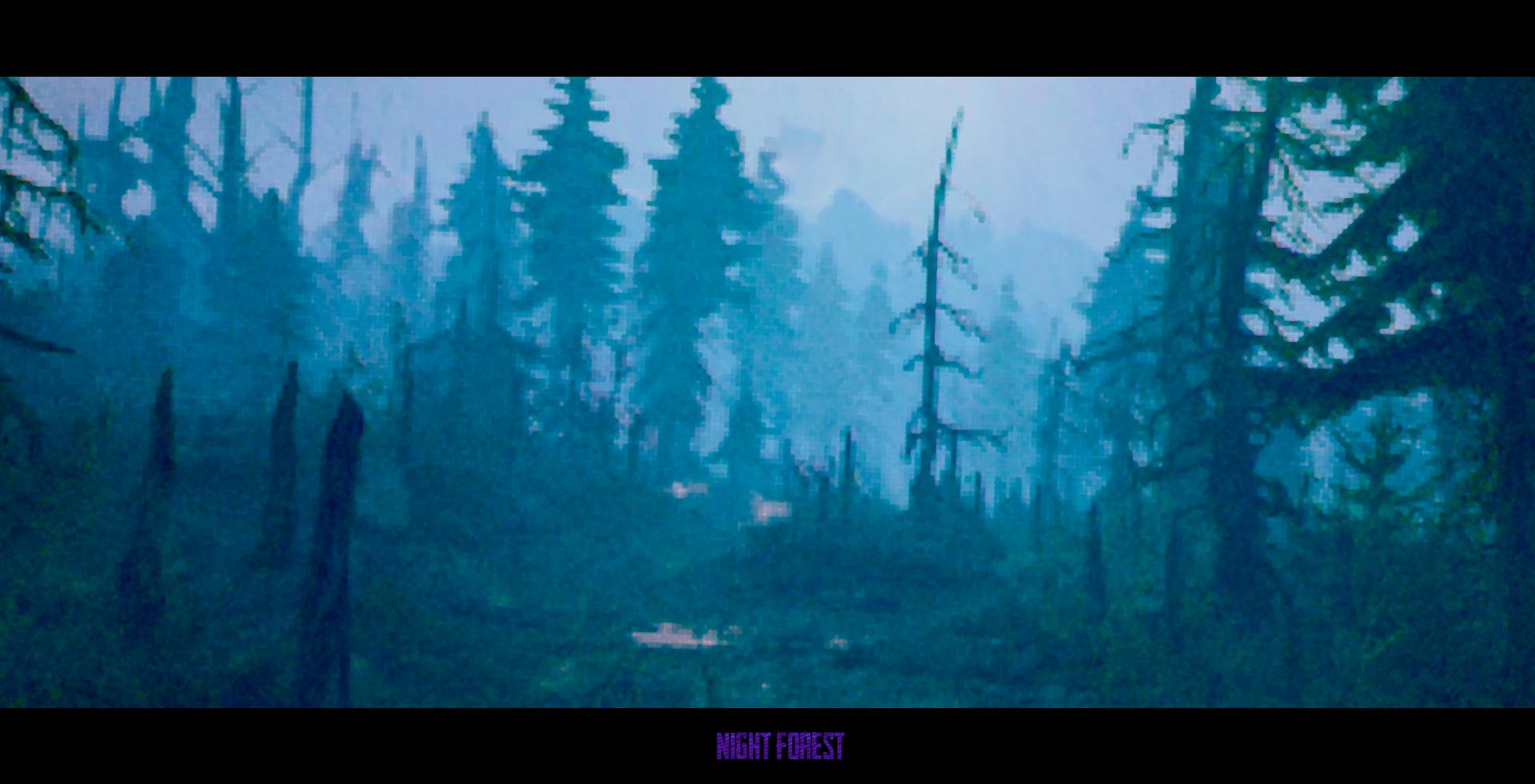 Night Forest 1920981 Hd Wallpaper Pinterest Wallpaper