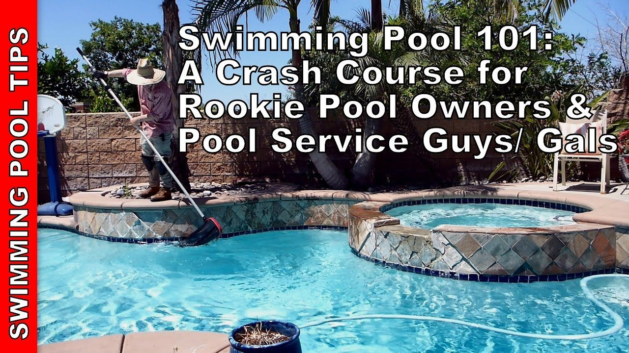 Swimming Pool 101 A Crash Course For Rookies Swimming Pools Pool Pool Care