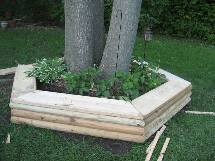 Awesome Tree Bench Ideas Part - 13: Making A Tree Ring Seat U2013 Preparation: Garden Bench, Lawn Ornament And  Architectual Element