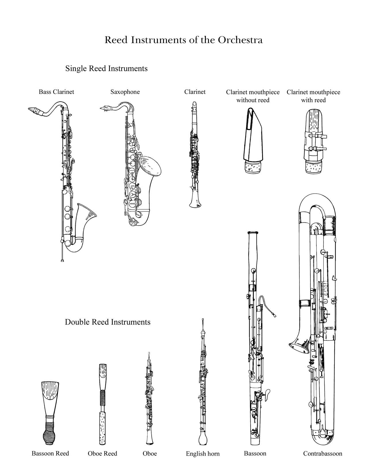 Woodwind instruments piccolo drawing