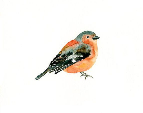 CHAFFINCH by DIMDI Original watercolor painting 10X8inch by dimdi, $25.00