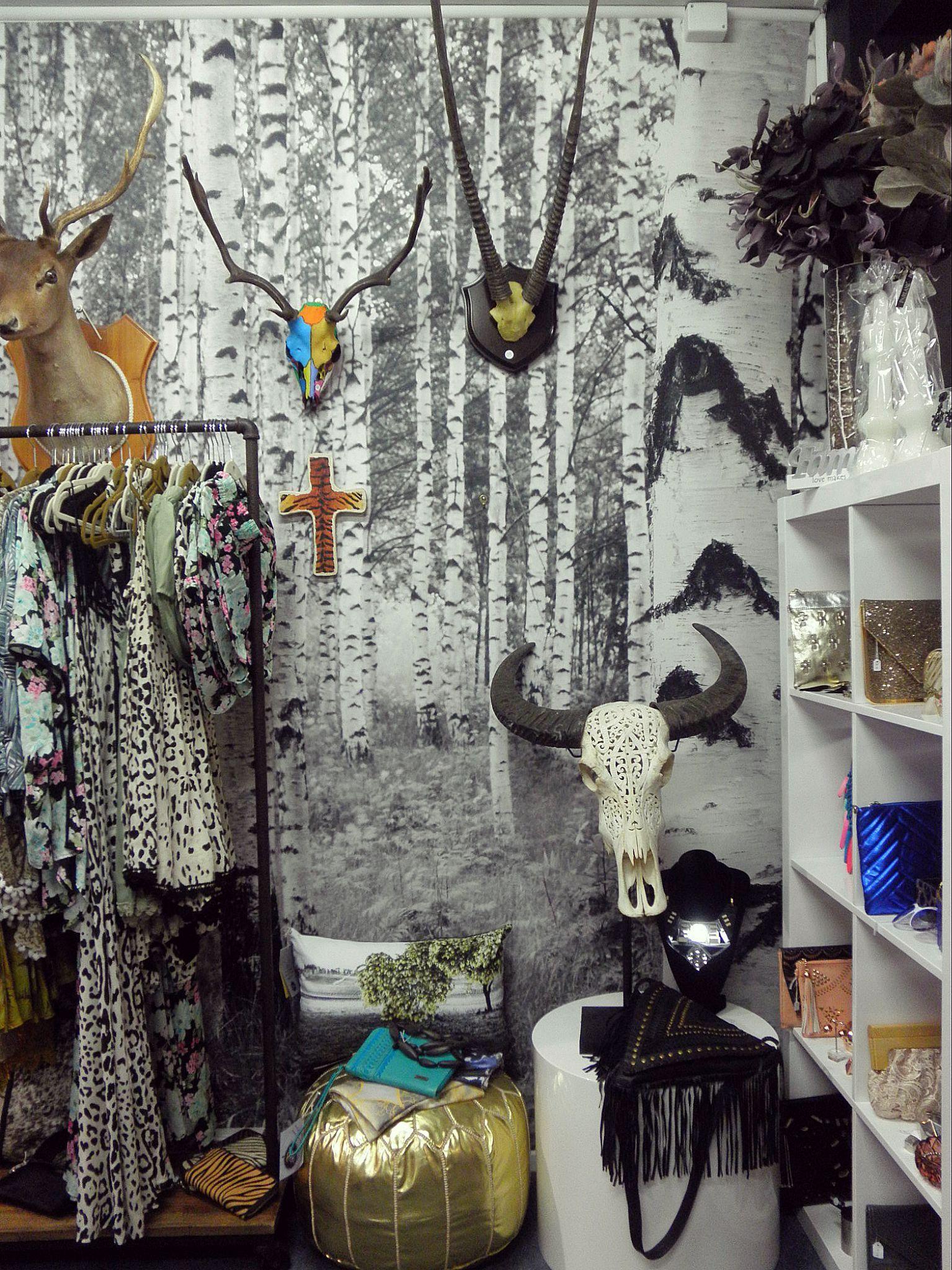 A shop i fell in love with in tasmania birch tree wallpaper