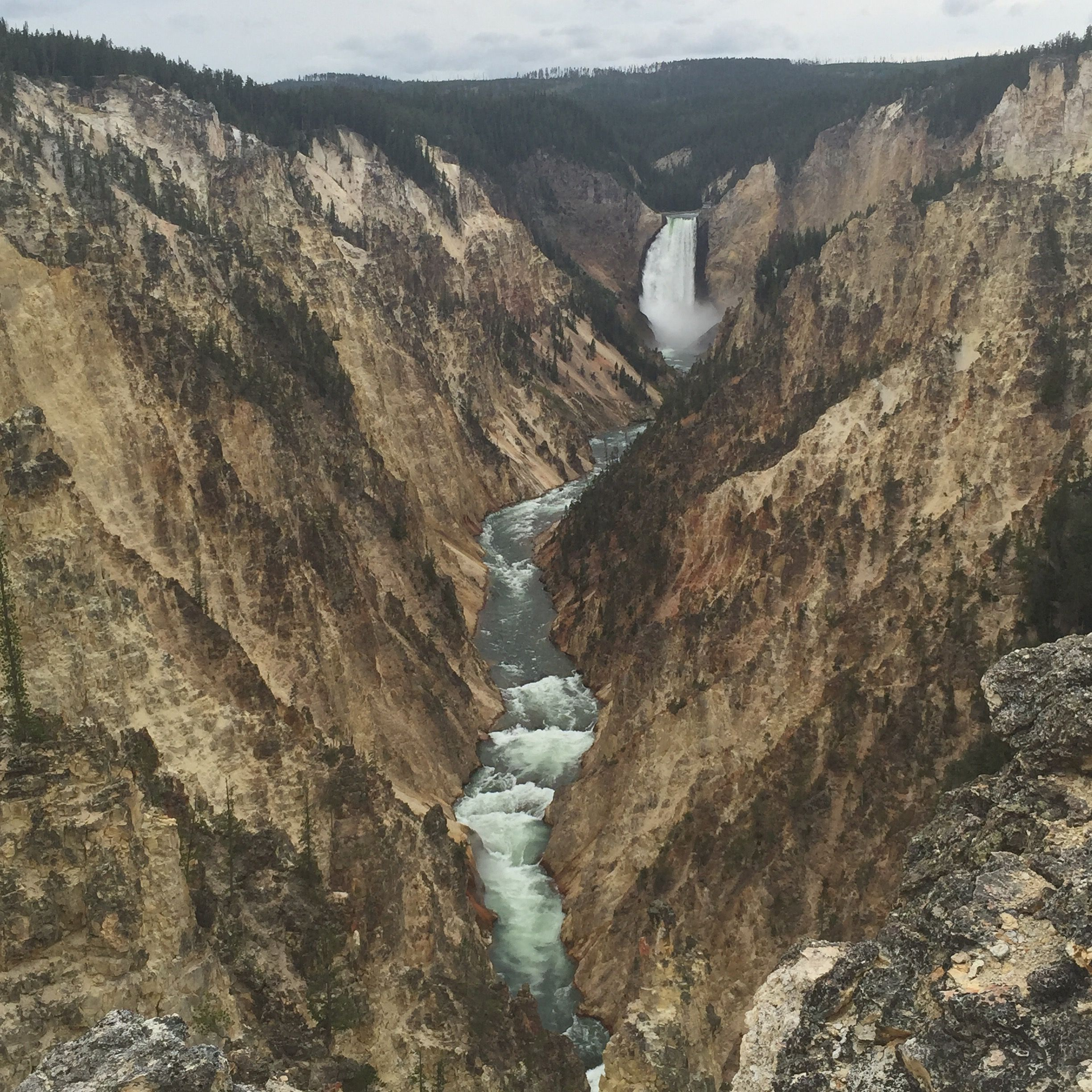 The Ultimate 7-day Teton And Yellowstone Road Trip