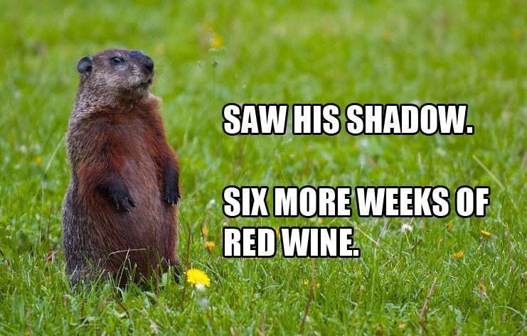 6 More Weeks Wine Humor Red Wine Wine Quotes Funny