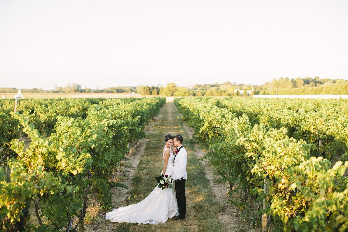 Tomasello winery vineyard photo credit saltwater studio