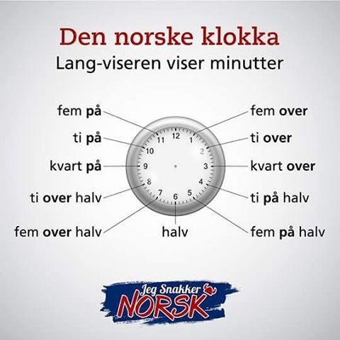 THE NORWEGIAN LANGUAGE IN THE DIGITAL AGE NORSK I DEN