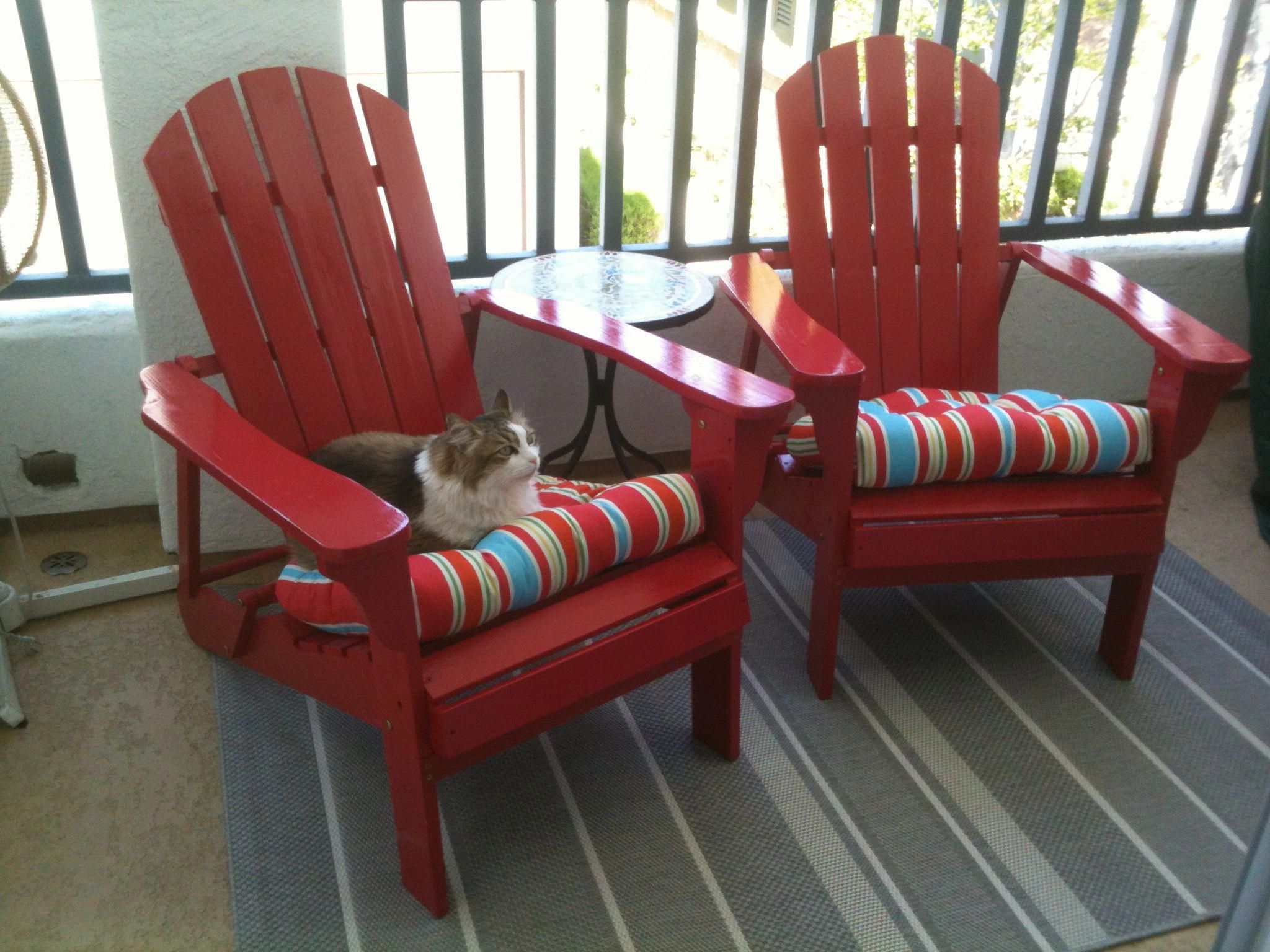 Folding Adirondack Chairs And Chair Pads From Marshall S Mosaic Table Cost Plus Crate Barrel Outdoor Rug Precious Cat Enjoying The New Patio