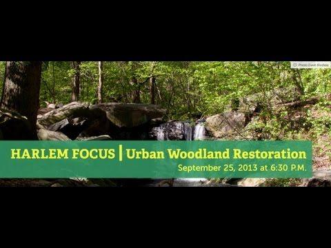 Harlem Focus | Urban Woodland Restoration: Design & Nature's Habitat | Cooper Hewitt, Smithsonian Design Museum