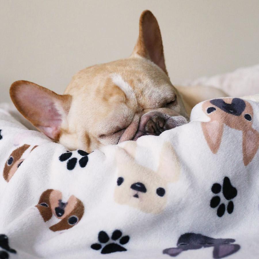 French Bulldog Love In 2020 French Bulldog French Bulldog Gifts Dog Mom