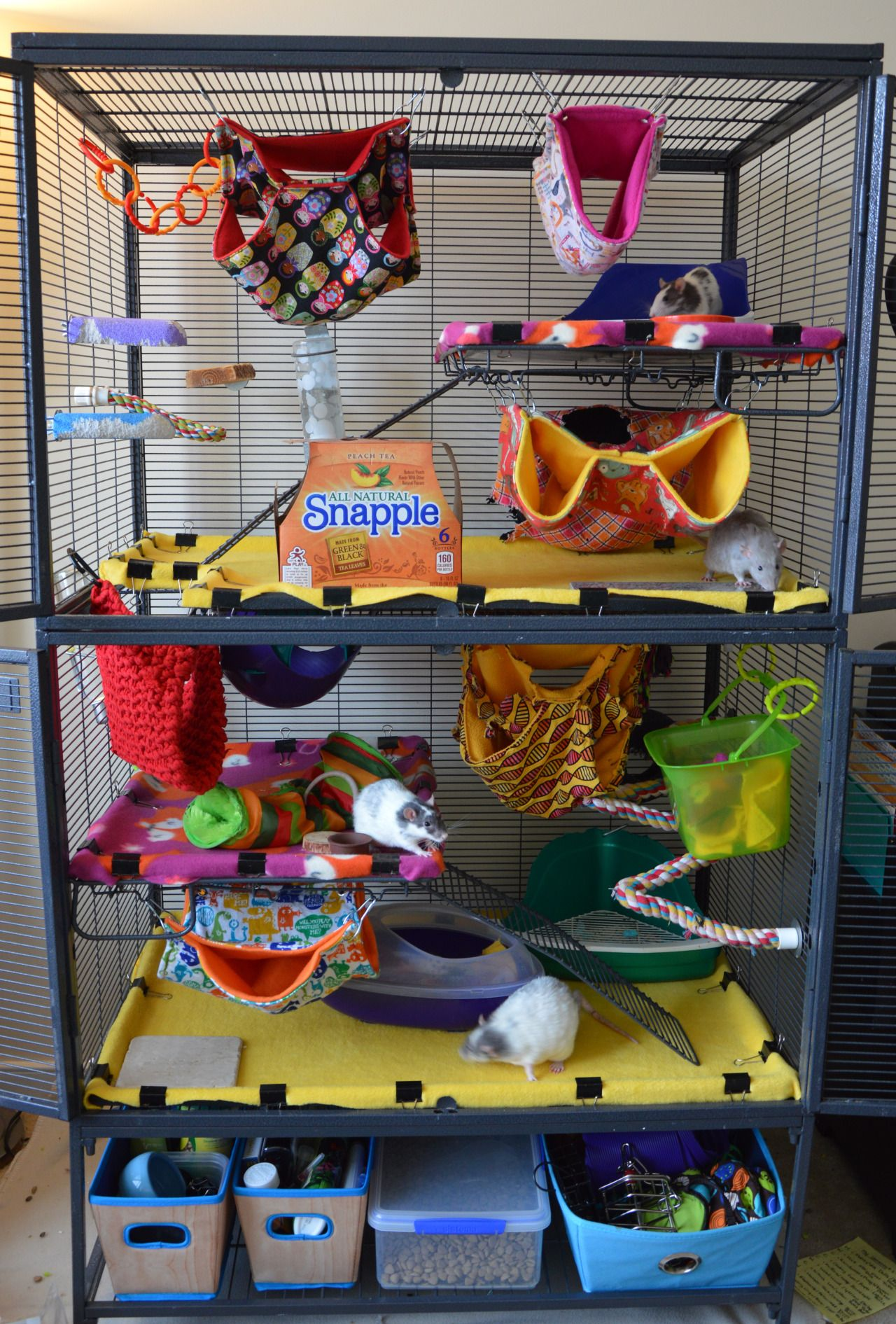 Colourfully decorated critter nation cage for rats rat