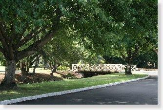 ba51398be899114fa6fe81f0f9c85aef - Forest Lawn Memory Gardens Ocala Fl