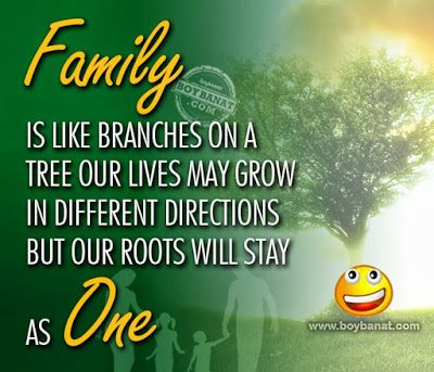 wishes for family day Family day quotes, Family quotes