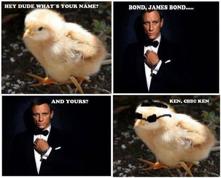 ba51c552d550ee97e1444f39742b9471 funny james bond meme jokideo com funny james bond meme,The Names Bond Meme