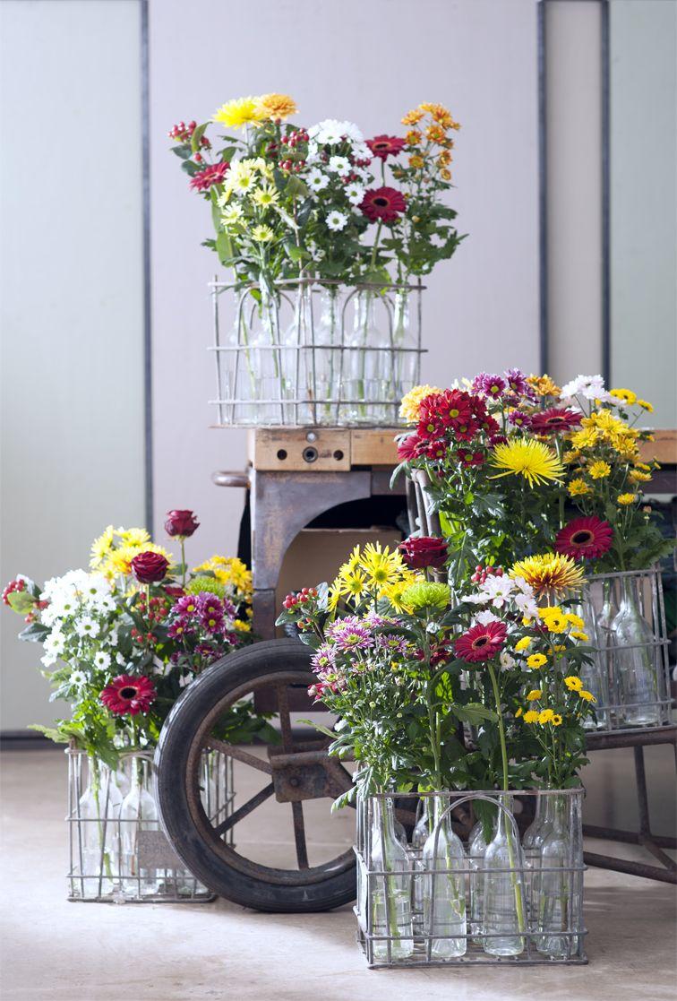 www.tollwasblumenmachen.de | blume, dekoration und einrichten & wohnen, Gartengerate ideen