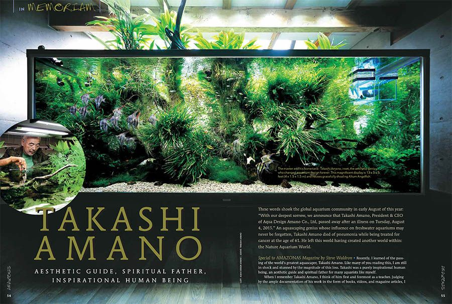 Exceptionnel AMAZONAS Contributor Steve Waldron Offers A Tribute To The Recently  Departed Aquascaping Genius, Takashi Amano