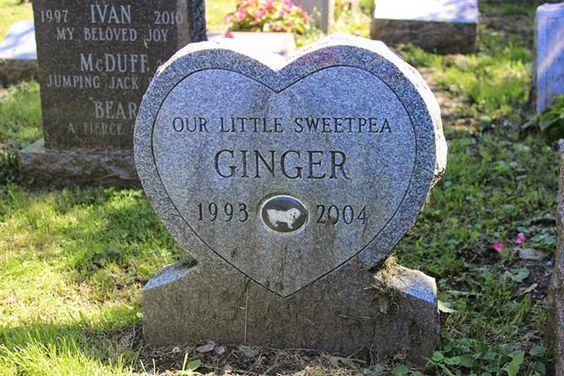 Pin by Robert Emond on Cemetery Pet cemetery, Old