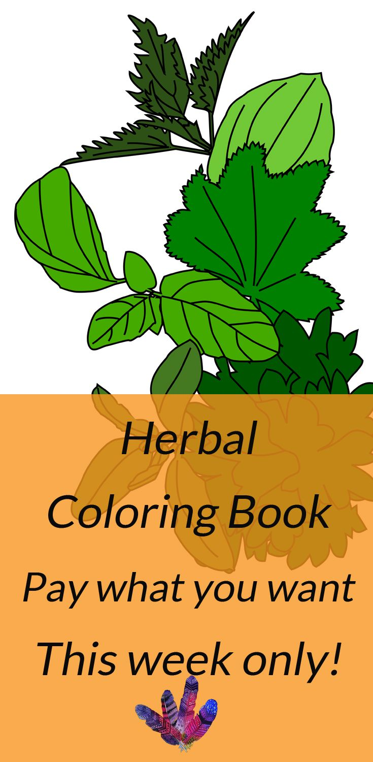 Coloring Herbs - a herbal coloring book | For the Love of Coloring ...