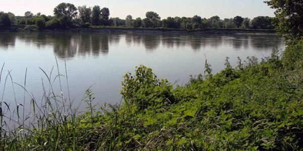 Glifosato, pesticidi e interferenti endocrini nel fiume Po: il nuovo rapporto Ispra