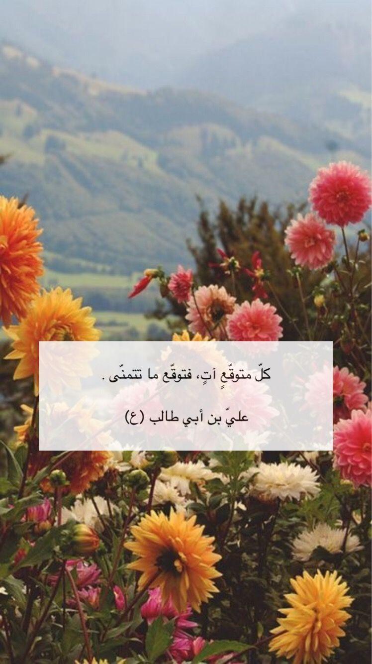 اقوال الامام علي ع Islamic Quotes Wallpaper Funny Arabic Quotes Islamic Quotes