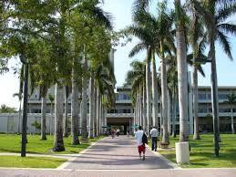 Esta escuela es la unversity de Miami.