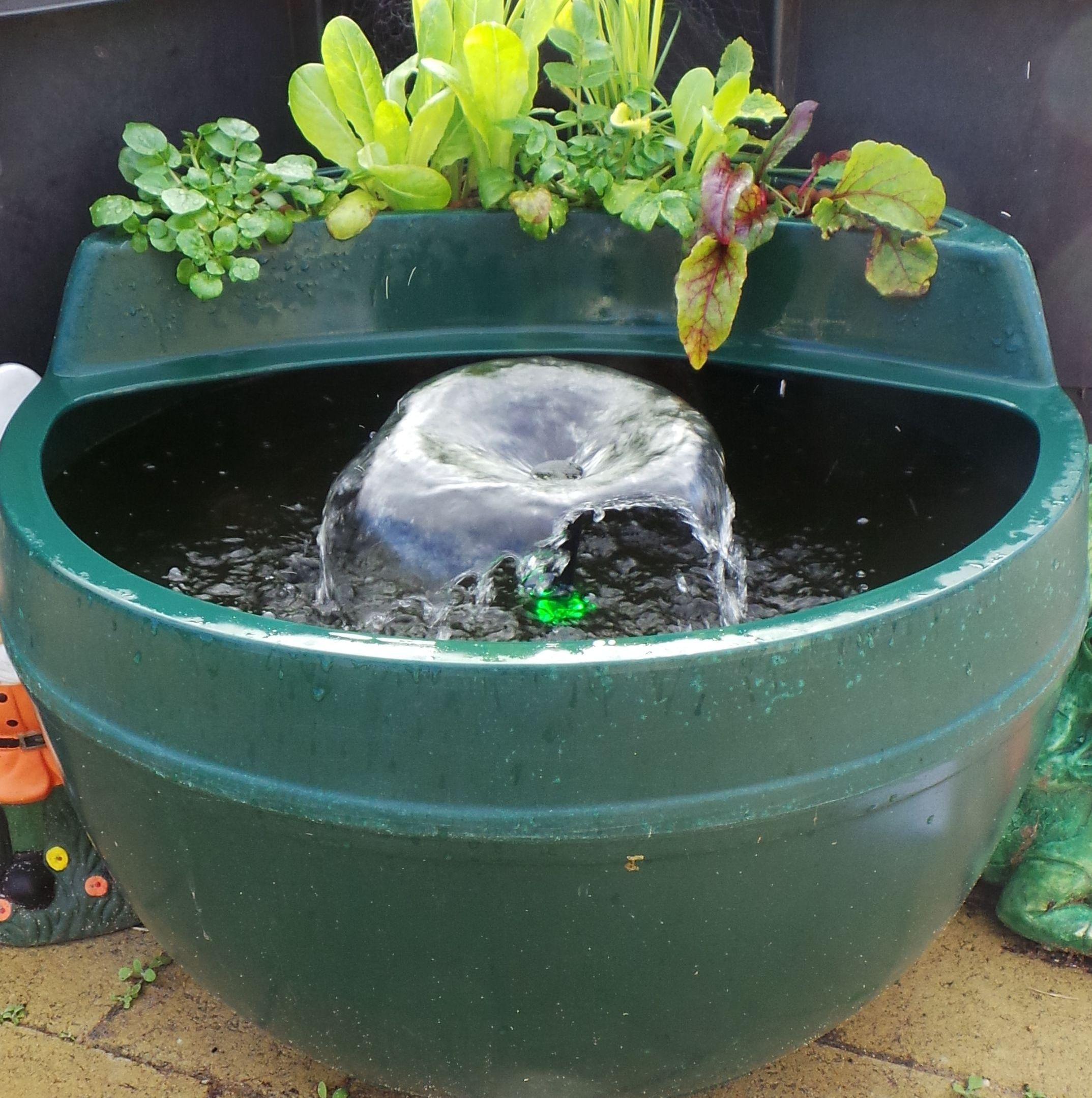 Aquaponics Pod Kit Fully Inclusive 199 Backyard