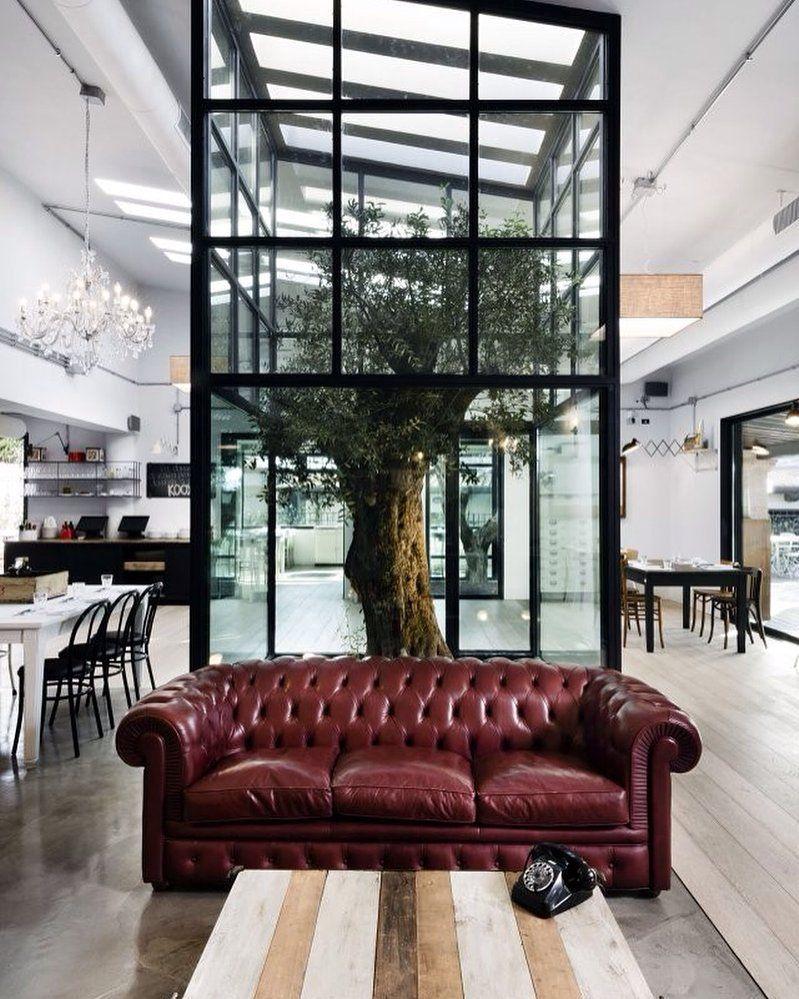Op de blog: boom in huis! Zie bio link. #woonkamer #boom #tree ...