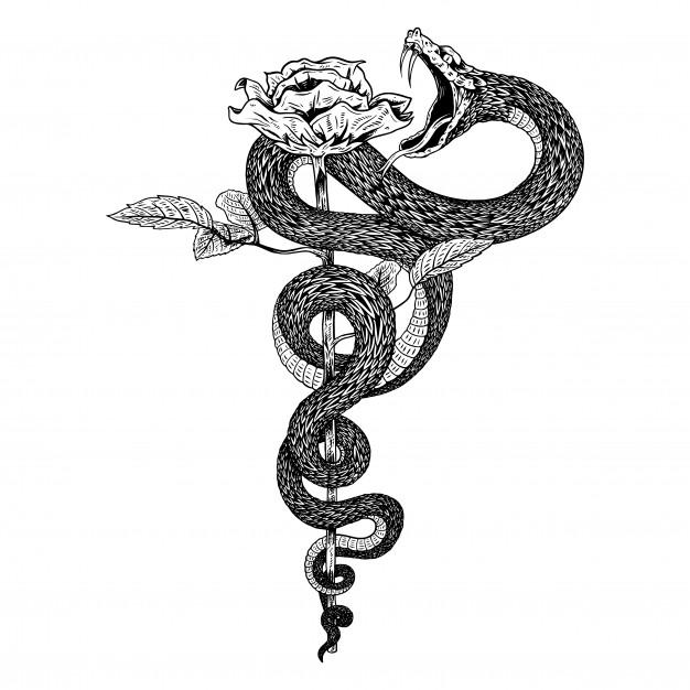Snake Drawing Ricerca Google Inspirational Tattoos Snake Tattoo Design Hand Tattoos