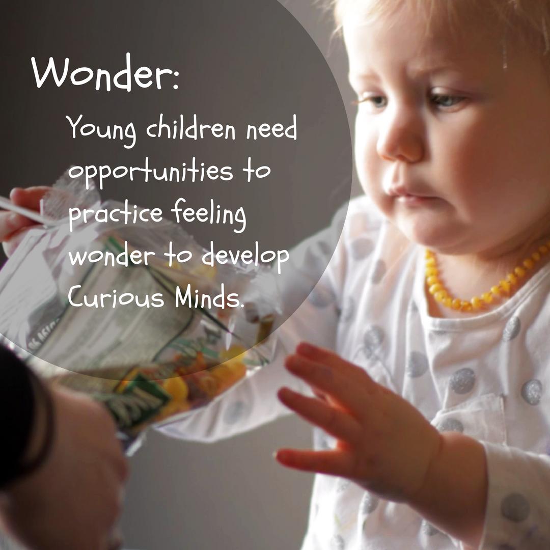 Children - Child Development Quotes Kids