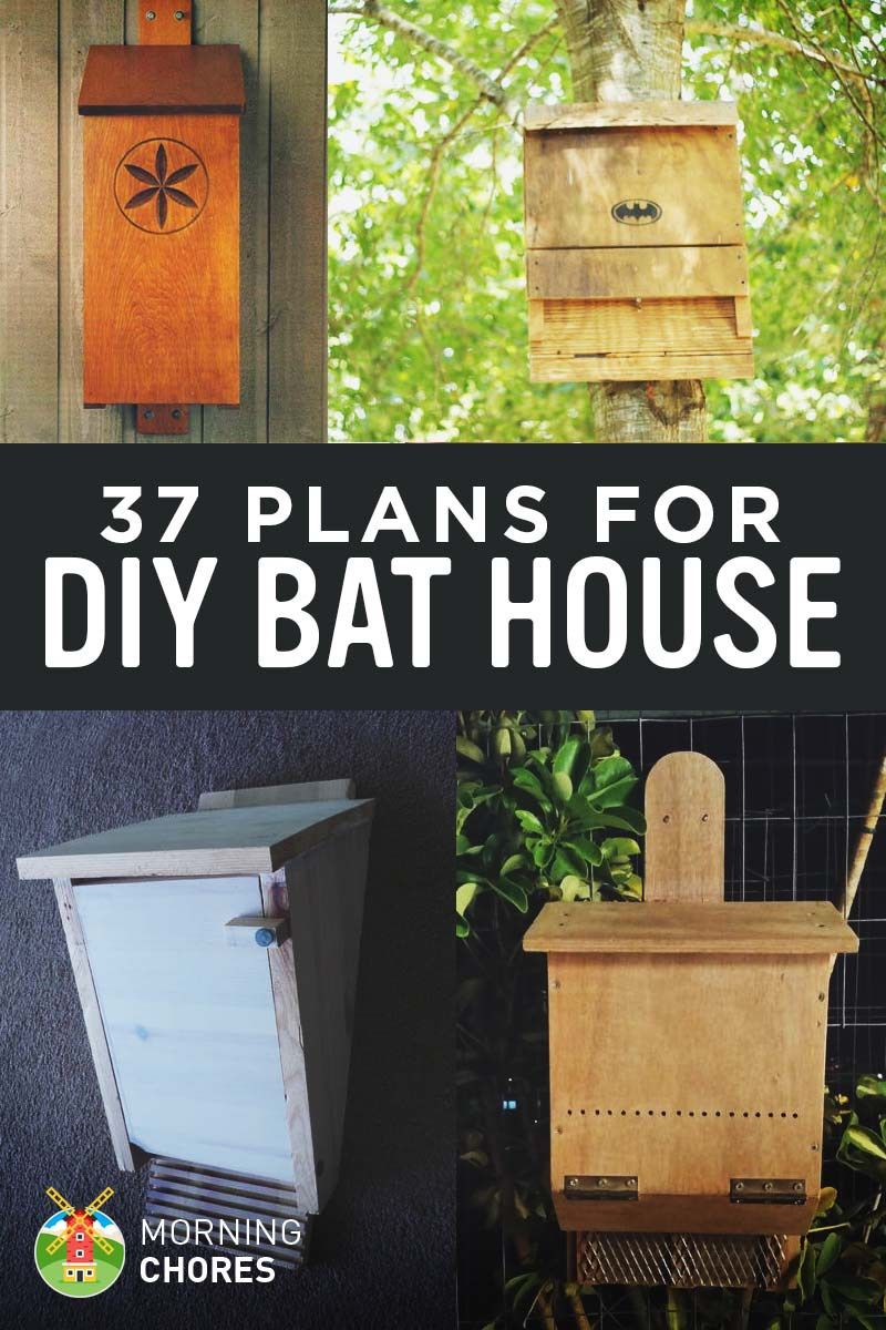 Marvelous 37 Free DIY Bat House Plans That Will Attract The Natural Pest Control (and  Save
