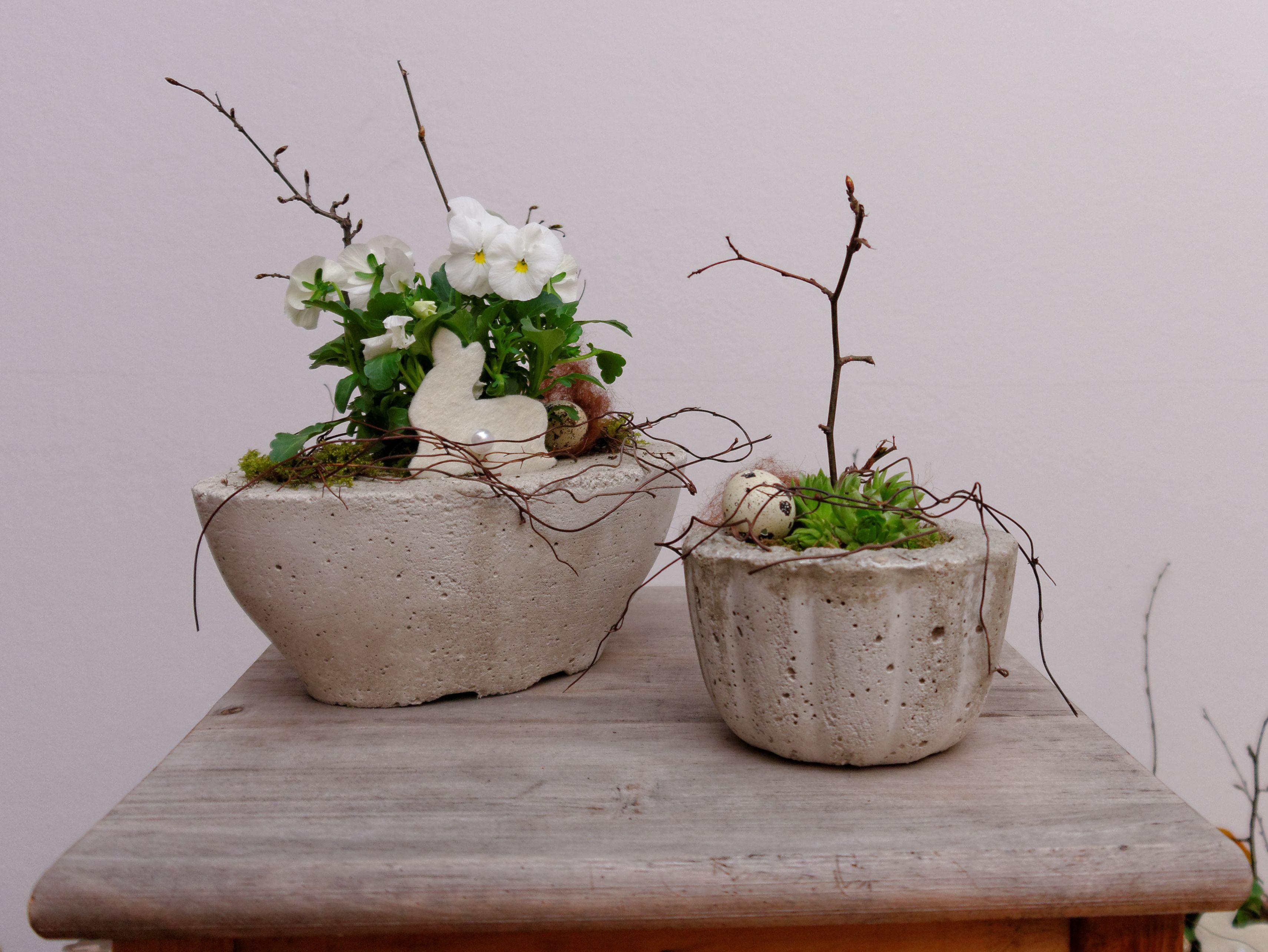 Blumen bertopf aus beton betonschale mit stiefm tterchen for Dekoration ostern