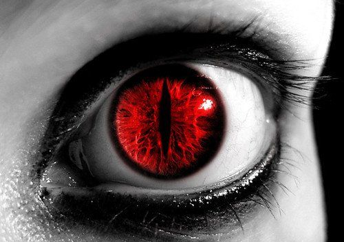 Amazing Eyes And Eye Makeup Wolf Pinterest Augen Rote Augen