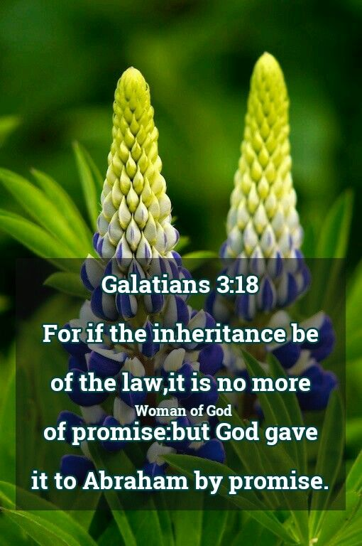 Galatians 3:18