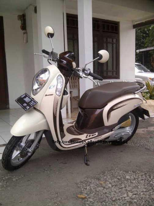 Honda Scoopy Png : honda, scoopy, Scooters, Ideas, Honda, Scoopy,, Honda,, Scooter