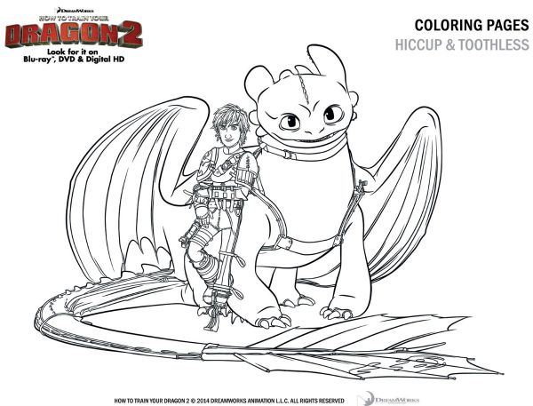 How To Train Your Dragon 2 Coloring Sheet Hiccup And Toothless Dragon Coloring Page Baby Dragon Art How Train Your Dragon